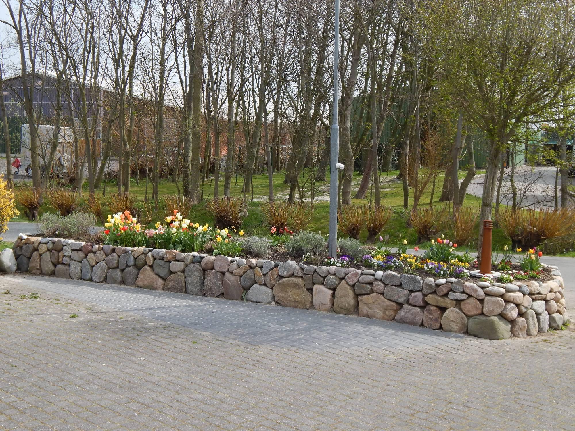 garten- und landschaftsbau wise büsum, büsumer deichhausen